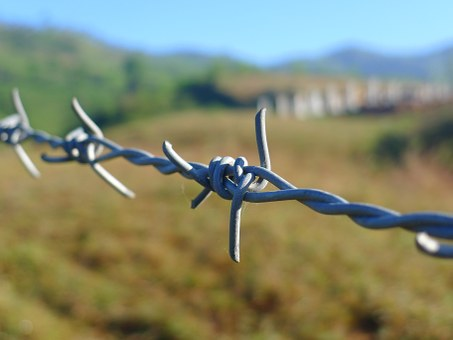 barbed-wire-114500__340