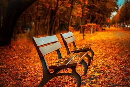 bench-560435__340