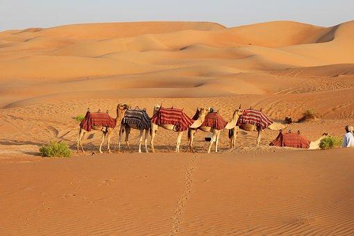 desert-3204603__340