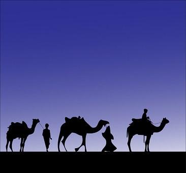 camel-316894__340