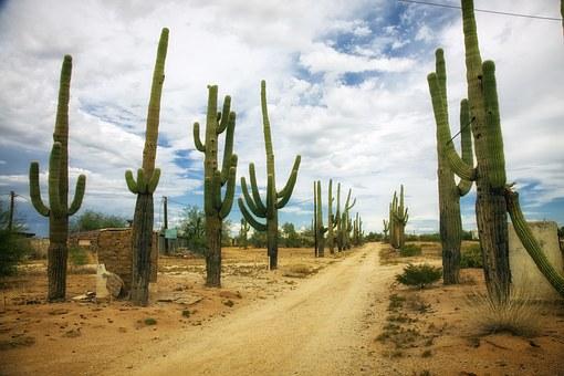 desert-392747__340