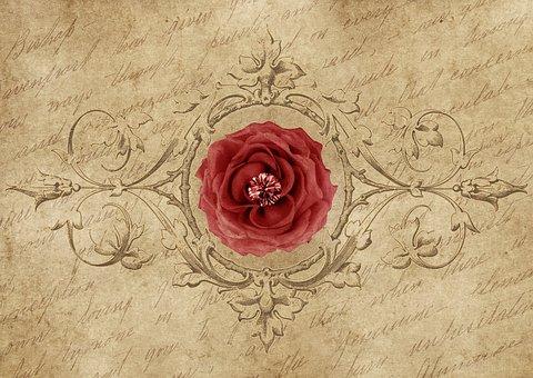 rose-3400953__340