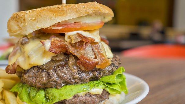 burger-1553287__340
