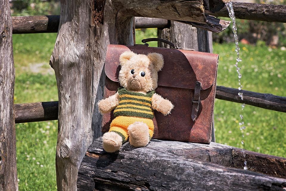 teddy-831818_960_720