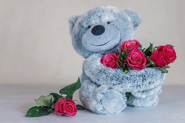 roses-4798572_640