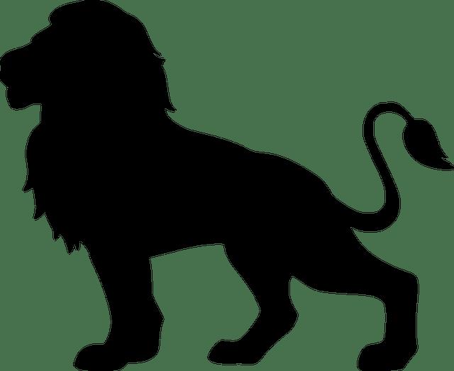 lion-4247082_640